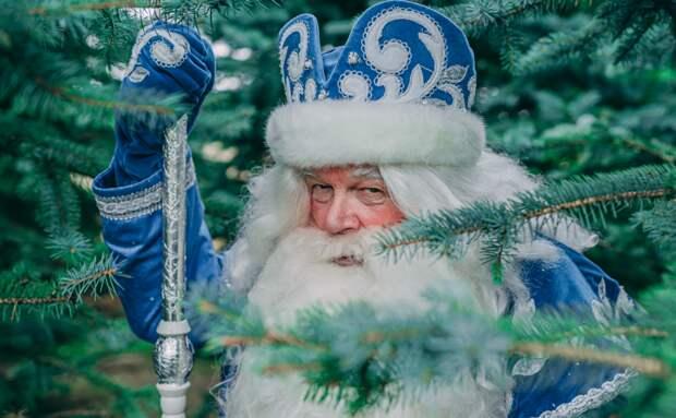 У Деда Мороза с Волгоградки появится собственный бренд