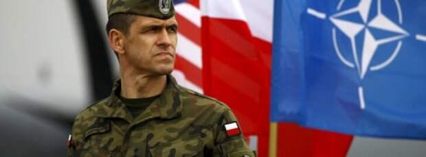 Польский военный психоз крепчает