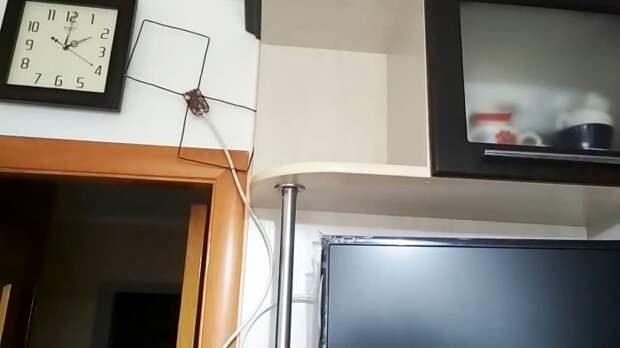 Очень простая самодельная антенна DVBT2 с усилителем