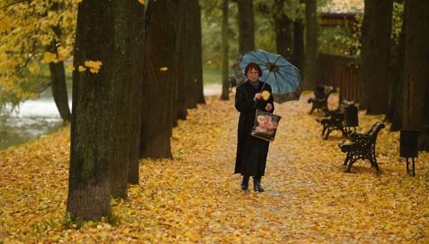 Небольшой дождь и до плюс 10 градусов ожидается в Подольске во вторник