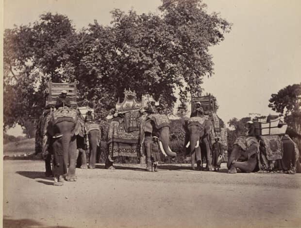 Albom fotografii indiiskoi arhitektury vzgliadov liudei 14
