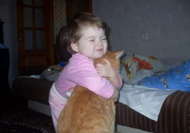 До чего кота жизнь довела.
