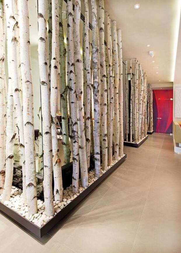 Лес вместо стен (подборка)
