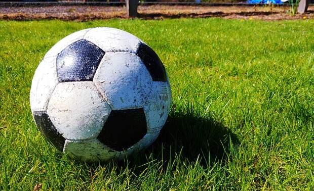 Россияне предложили распустить футбольную сборную или отдать ее Путину