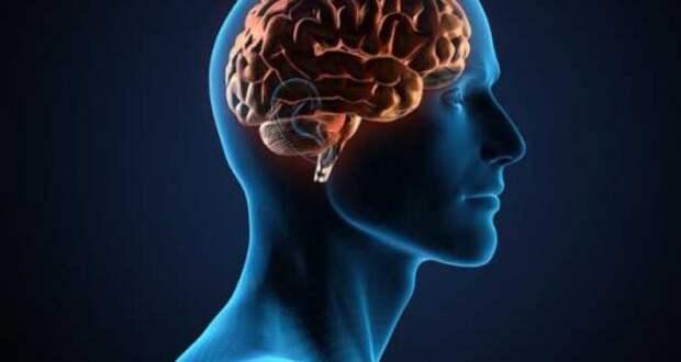 7 забавных упражнений для гибкости ума