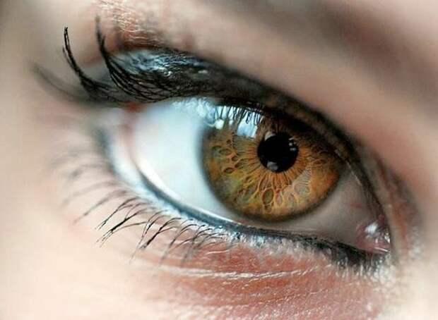 Факты о глазах, которые могут удивить