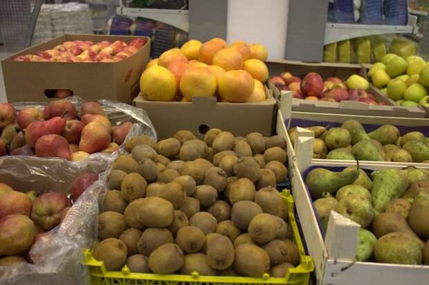 РФ остается лидером в импорте овощей и фруктов из Турции