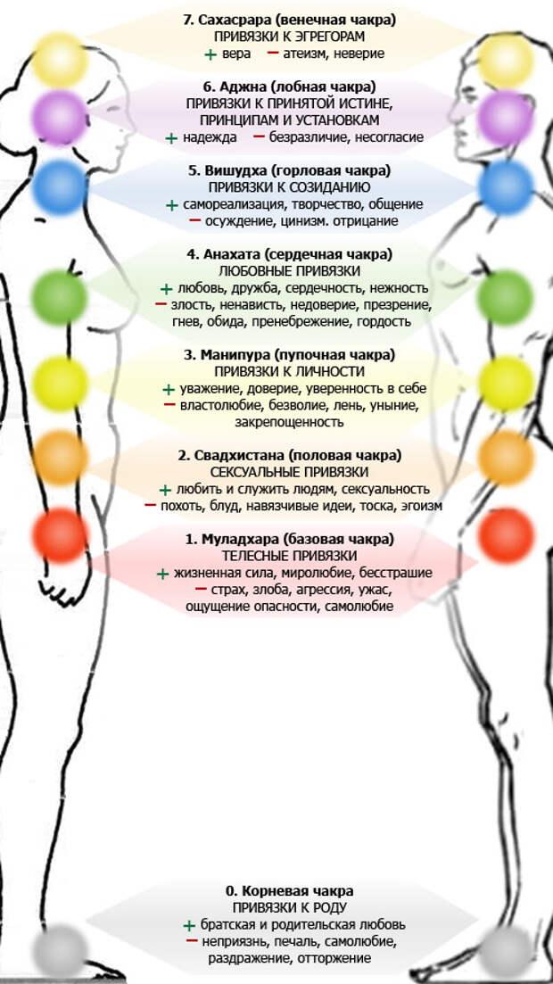 Рис. 2. Привязки между людьми на уровне энергетических центров