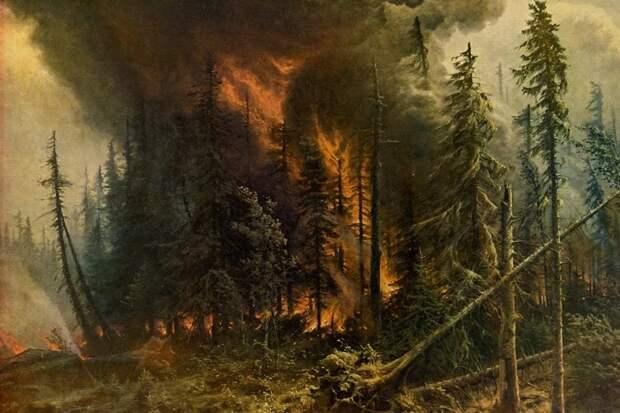 Российские леса постоянно горят, но их биомасса рекордно выросла. Как так вышло и что из этого следует?