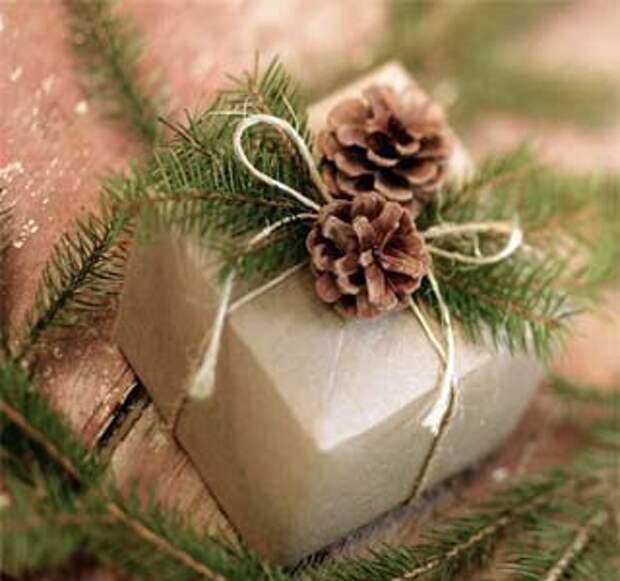 Красиво упаковать подарок можно с  веточкой сосны с шишками