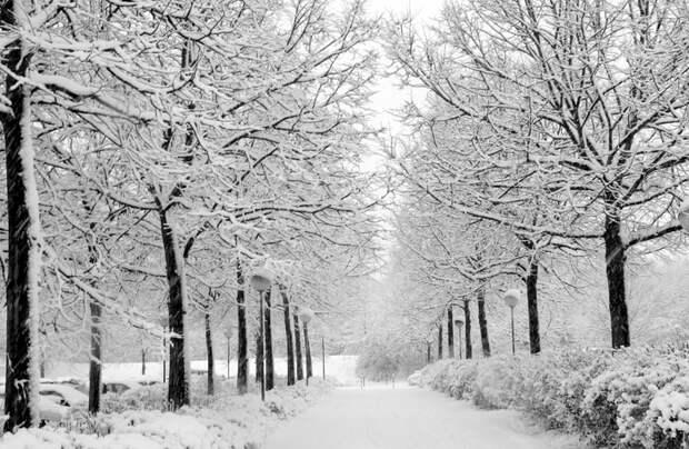 winter-road (700x456, 264Kb)