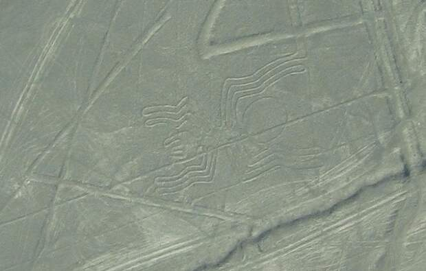 Один из геоглифов плато Наска/ Фото:Raymond Ostertag