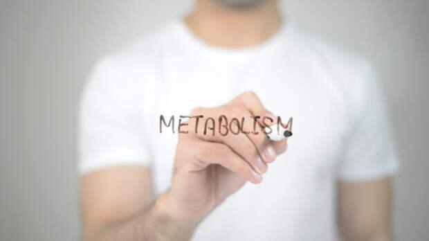 Почему вы набираете вес после диеты: мнение учёных. Изображение номер 2
