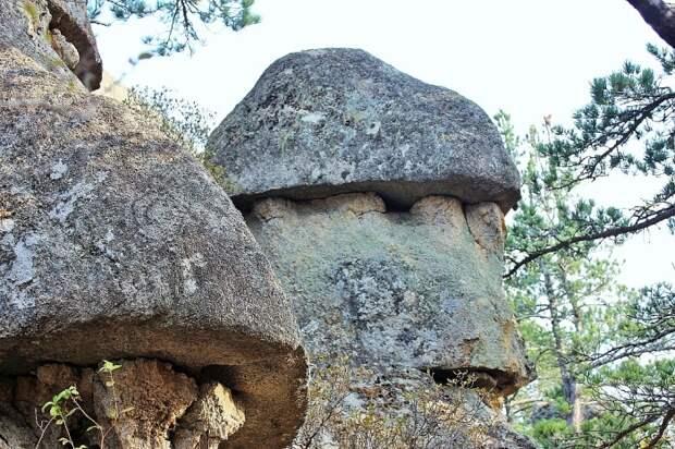 У таинственных рисунков плато Наска появился конкурент: В Приморье обнаружены гигантские геоглифы