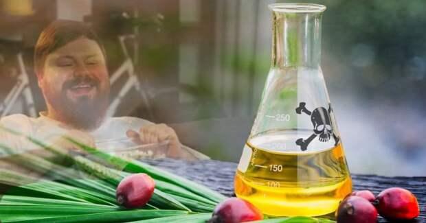 Разоблачение пальмового масла: доклад Всемирной Организации Здравоохранения