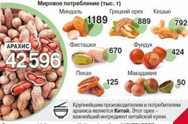 Какой орех самый популярный в мире? Инфографика