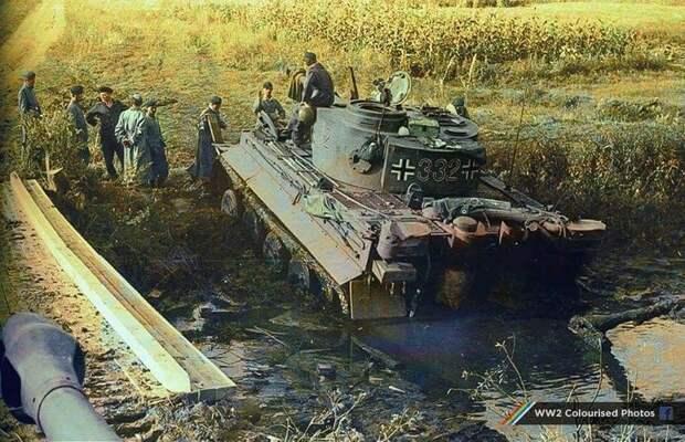 Тигр застрял в грязи в районе Знаменки, Кировоградская область (Украина). Приблизительно, октябрь 1943 года. Источник: naturtreenspicerx.pw
