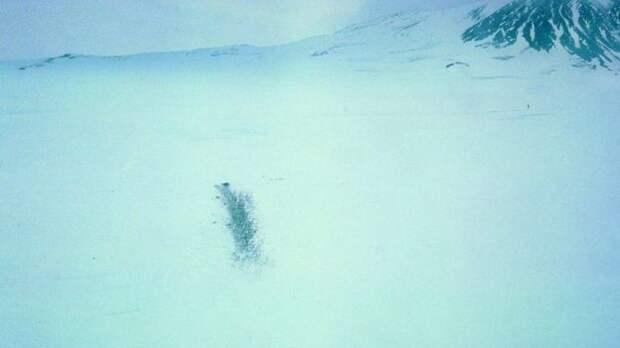 Белая мгла. 40 лет крупнейшей авиакатастрофе в Антарктиде