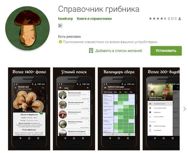 Приложения для смартфонов в помощь грибникам