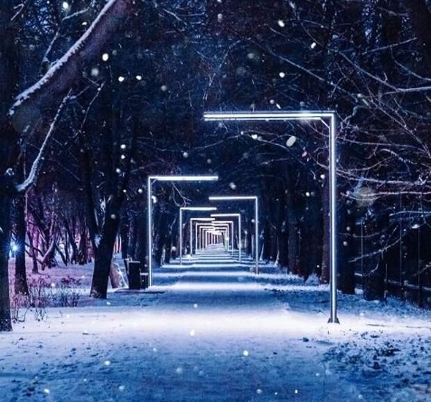 Фото дня: хлопья снега и ночные огни