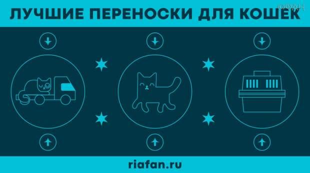 Трансфер для Матроскина: выбираем лучшую переноску для кошки