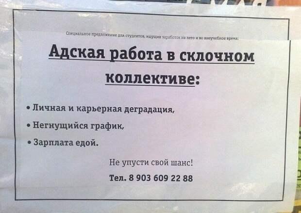 Ищу зарплату, работу не предлагать