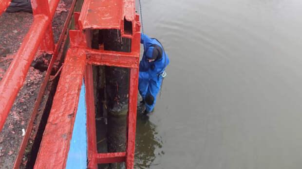 Погубившее огромное количество рыбы водохранилище отремонтируют вРостове