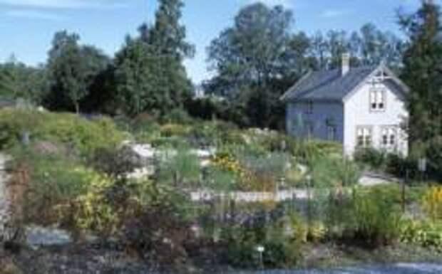 Самый северный ботанический сад на планете