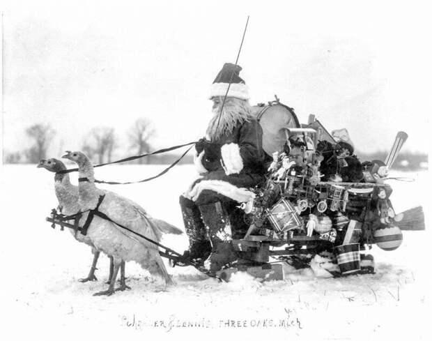 Санта-Клаус с подарками на санях запряженных индюшками, Мичиган, 1909 год. ретро фото, фотт, это интересно