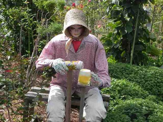 Много чучел в огороде японского фермера Нобую Онимуши, Nobuou Onishi
