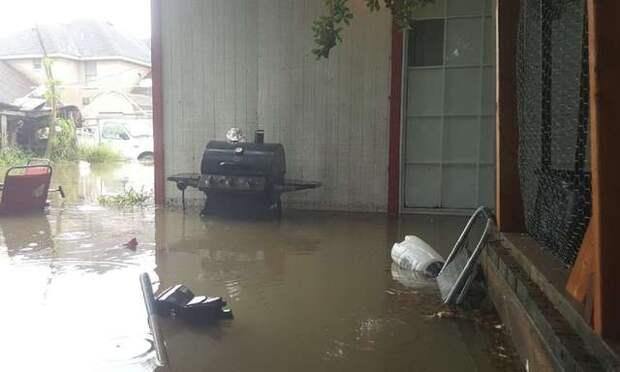 Во время наводнения мужчина прорубил пол в доме, чтобы спасти кошку
