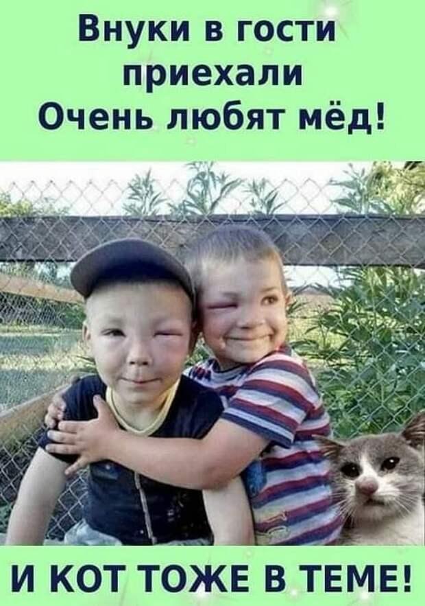 Возможно, это изображение (2 человека и текст «внуки в гости приехали очень любят мёд! и KOT тоже Ð TEME!»)