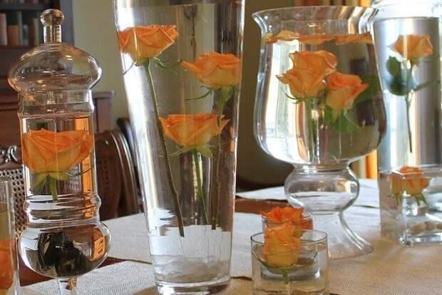 Консервированные цветы — сохраните красоту на долгие годы