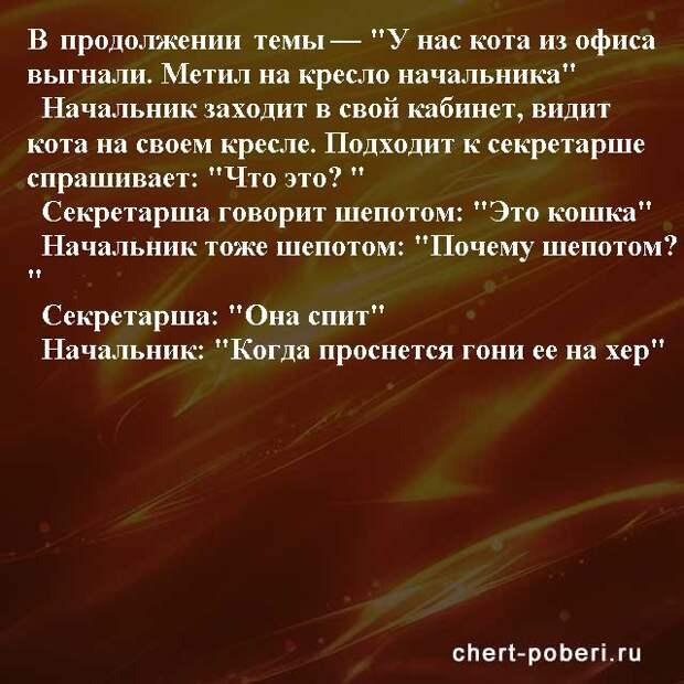 Самые смешные анекдоты ежедневная подборка chert-poberi-anekdoty-chert-poberi-anekdoty-01581112082020-9 картинка chert-poberi-anekdoty-01581112082020-9