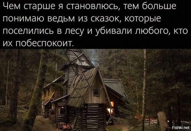Возможно, это изображение (текст «чем старше я становлюсь, тем больше понимаю ведьм из сказок, которые поселились в лесу и убивали любого, кто их побеспокоит. Fishki. net»)