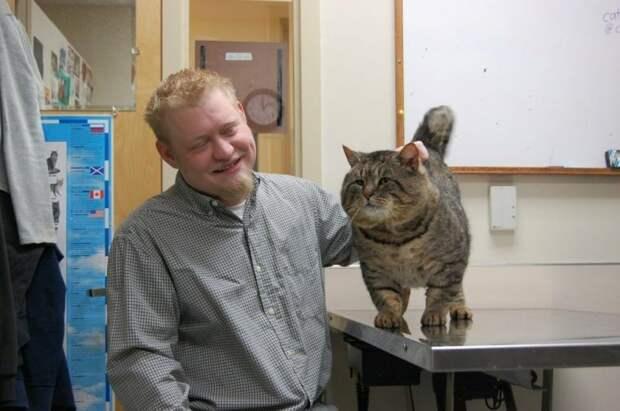 Мужчина, котик которого давно пропал, увидел своего питомца в новостях — его кот воровал корм