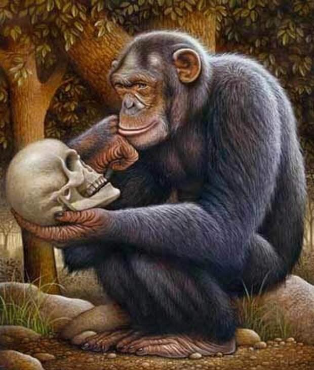 Сколько всего было на Земле разумных цивилизаций?