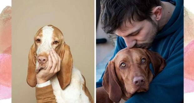 Эффект питомца: как забота о собаке делает вас счастливее