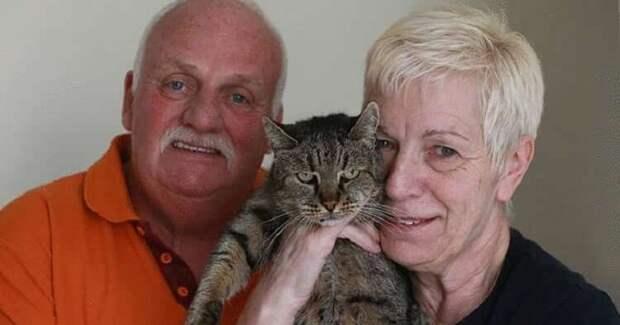 Самый старый кот в мире отметил 31 день рождения! И вот он какой!