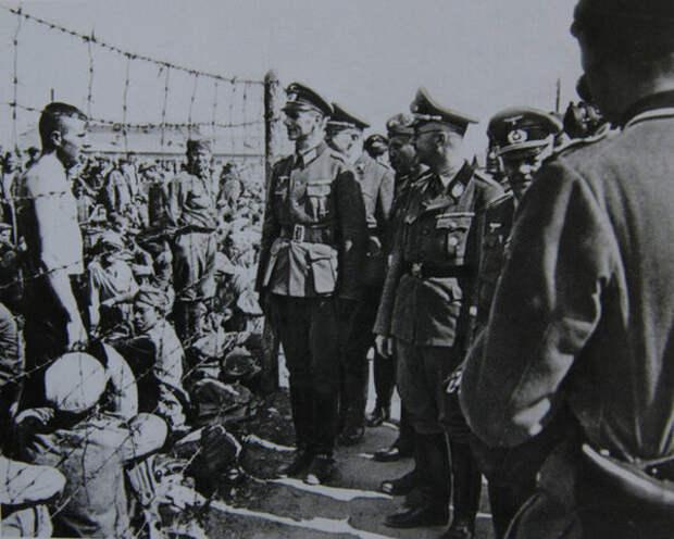 Минск, 15 августа 1941 г.