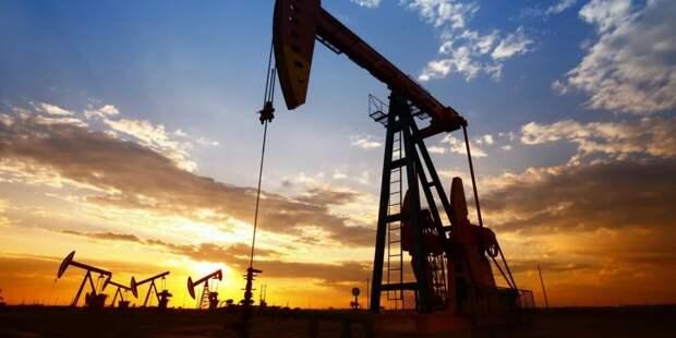Новак рассказал о планах РФ по добыче нефти