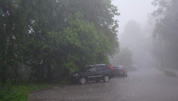Абсолютный рекорд весны по осадкам может обновиться в Москве в пятницу
