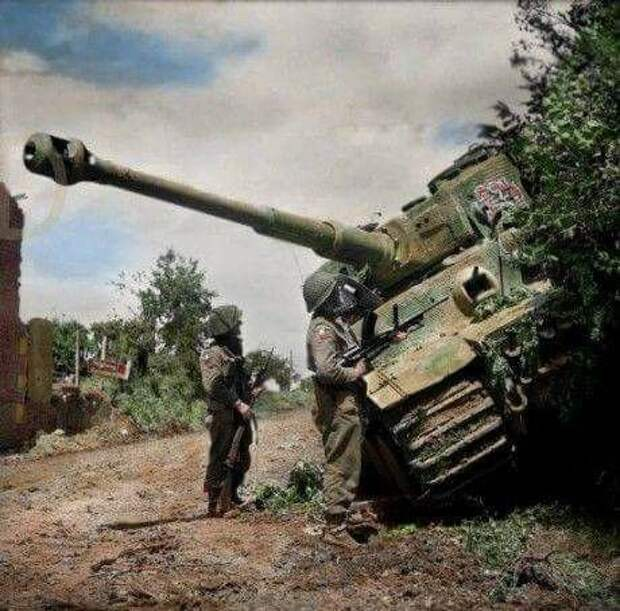 Тигр, подбитый британцами и брошенный экипажем 28 июня 1944 года в Нормандии, в ходе операции Epsom. Принадлежал танк батальону Виттмана. Источник: parabellum.estranky.cz