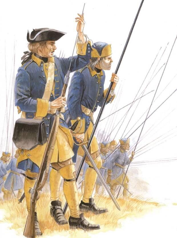 Пикинеры в армии Карла XII были явным рудиментом ушедшей эпохи и ко времени Полтавского сражения в 1709 году исчезли из больишнства европейских армий