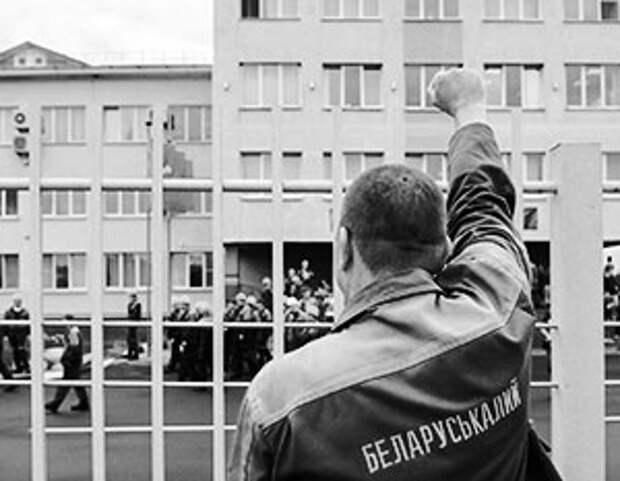 В прошлом году на продаже калийных удобрений Белоруссия заработала 2,8 млрд долларов