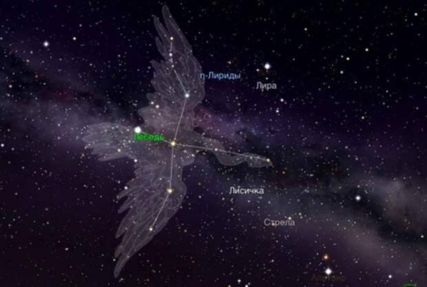 Цивилизация созвездия Лебедь – покровитель человечества. Тайна смерти и бессмертия