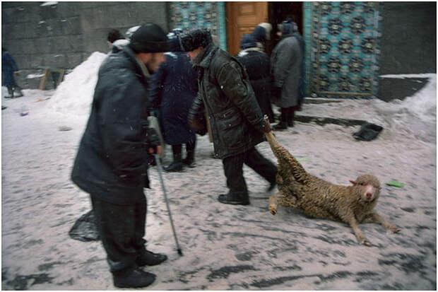 Фотожурналист Сергей Максимишин – мастер фотоисторий 9