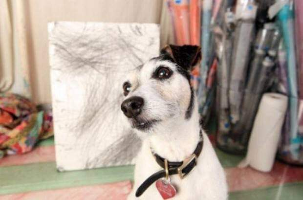 Животные-художники
