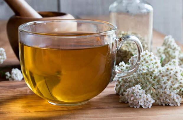 Витаминный чай для повышения гемоглобина