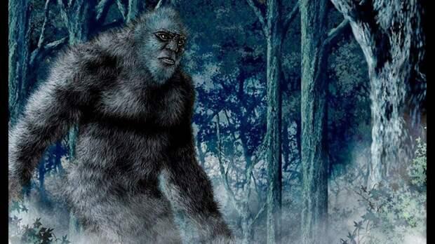 Говорят, хозяин леса был около 3 метров в длину, и мог легко охотиться на медведей.